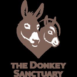 donkey_sanctuary